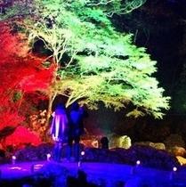 紅葉のころ、赤目四十八滝がライトアップされます♪
