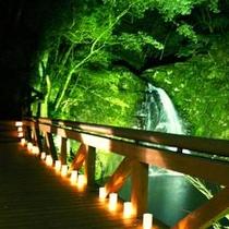 不動滝のライトアップ。