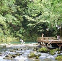 霊蛇滝の休憩。森林浴シーズン。