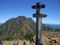 阿弥陀岳山頂より赤岳を臨む