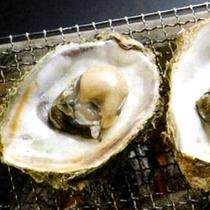 能登のカキはちょっと小ぶり…酢牡蠣にして食べるのが一番美味しいです!
