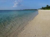 歩いて2分の備瀬ビーチ!お散歩、貝拾い、水遊びが楽しめます♪