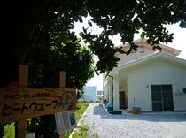 備瀬のフクギ並木の遊歩道の一画にある3部屋だけの小さな民宿です!