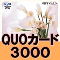 クオカード3000円分付き