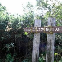 アンヌプリ登山道入り口1