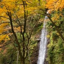 ■養老の滝■