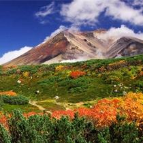 紅葉が見ごろの旭岳