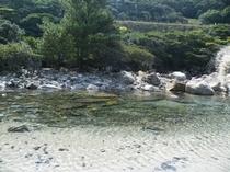 大川の滝の下流