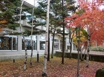 建物前の紅葉