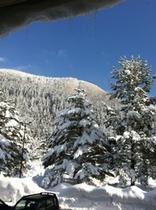 正面玄関からの雪景色