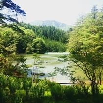 *【周辺】目の前に広がる湖畔の景色はなんとも美しいです。