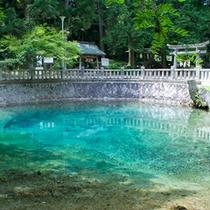 別府弁天池(湯本温泉から車30分)