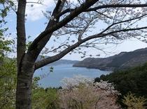 散歩コース_城山公園からの眺め