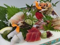 【造り一人前】 天然魚介類会席__季節の造り一例