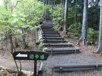 散歩コース_城山公園までの道