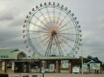 国立ひたち海浜公園