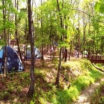 宿泊キャンプ場