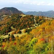 ◆山田牧場 紅葉の頃