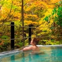 ◆仙人露天岩風呂 見事な紅葉を独占