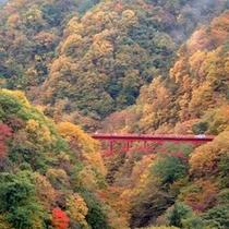 ◆松川渓谷 圧巻の紅葉を楽しめます
