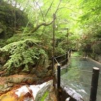 ◆「仙人露天岩風呂」 圧巻の渓谷美