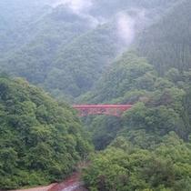 ◆松川渓谷 濃い緑が美しい