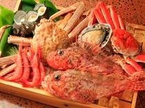 日本海の地魚