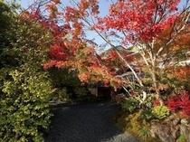 紅葉の玄関