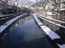 柳並木の冬景色