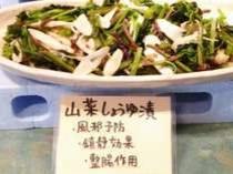 【山菜しょうゆ漬※日替り】風邪予防・鎮静効果・整腸作用