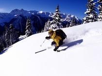 スキー(イメージ)
