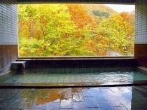 栗駒山麓を望む浴場
