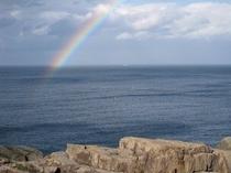 定置網と虹