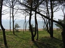 周辺・景観13