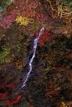 三頭の大滝
