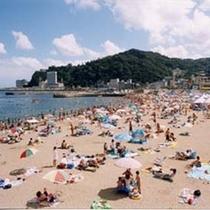 【楽天】サンビーチ昼景