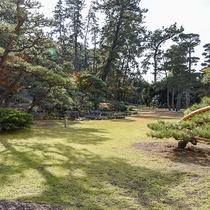 *【日本庭園】羽衣伝説の天女が舞い降りて来そうな緑輝く庭園