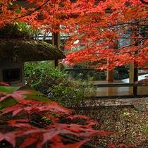 岩沼屋の紅葉…一年の中でも秋の紅葉シーズンはたくさんのお客様にお越しいただいております。
