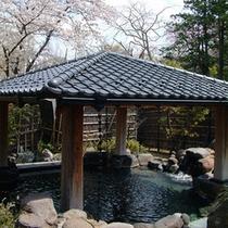 露天風呂(春)…春と言えば桜!桜を見ながらの温泉が楽しめます
