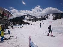 GW中のスキー