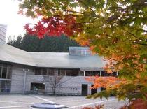 山荘中庭(秋)
