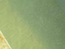 泉に浮く湯の花(貸切展望露天風呂3)