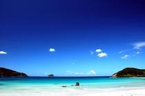 ◆沖縄の海◆