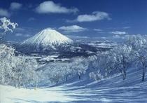 冬の絶景「羊蹄山」