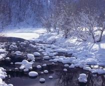 冬の絶景「尻別川」