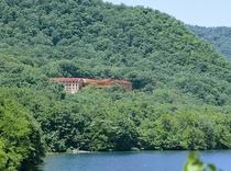 森と一体化したホテル