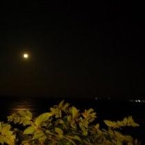 【眺望】夜景