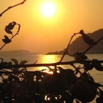 【眺望】秋の夕景とみかん