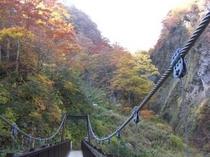 妙仙橋からの景色