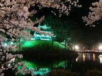 高田公園『観桜会』